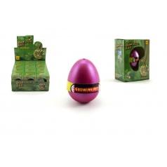 Dinosaurus líhnoucí a rostoucí z vajíčka v krabičce 8x10cm