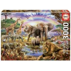 EDUCA 17698 Puzzle 3000 dílků - Duha nad oázou