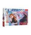 Trefl Puzzle Navždy spolu Ledové království II/Frozen II 100 dílků 41x27,5cm v krabici 29x19x4cm