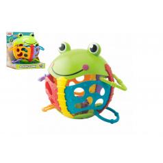 Teddies Chrastítko žabka plast s kroužky v krabičce 17x19x15cm 6m+