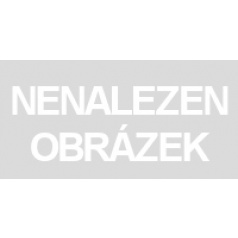 Hasbro TRANSFORMERS GENERATIONS WFC KINGDOM DELUXE FIGURKA