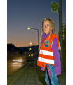ROLLYTOYS Dětská bezpečnostní vesta Rolly oranžová