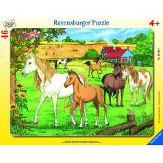 Ravensburger dětské puzzle Koně 30-48d