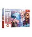 Trefl Puzzle Ledové království II/Frozen II 30 dílků 27x20cm v krabici 21x14x4cm
