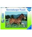 Ravensburger dětské puzzle Hříbě 150 dílků
