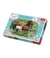 Trefl Puzzle Koně cválající 41x27,5cm 160 dílků v krabici 29x19x4cm