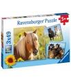 Ravensburger dětské puzzle Koně 3x49 dílků