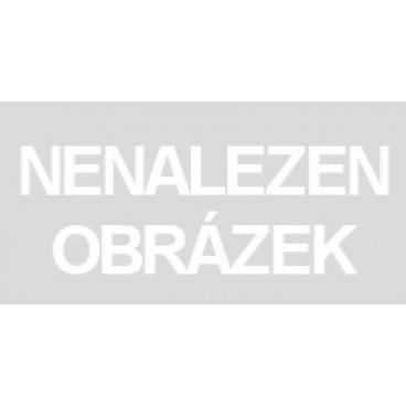 """OSTATNÍ - sale Disp.48ks - zapichovátka do květináče """"Berušky"""""""