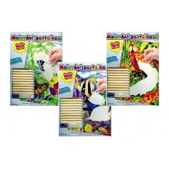 Malování pastelkami podle čísel 22x28,5cm asst 3 druhy na kartě