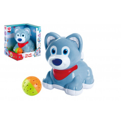 Teddies Pes / psík s loptičkou plast na batérie so zvukom v krabici 19x20x16cm 6m +