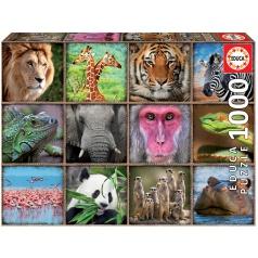 EDUCA 17656 Puzzle 1000 dílků - Divočina